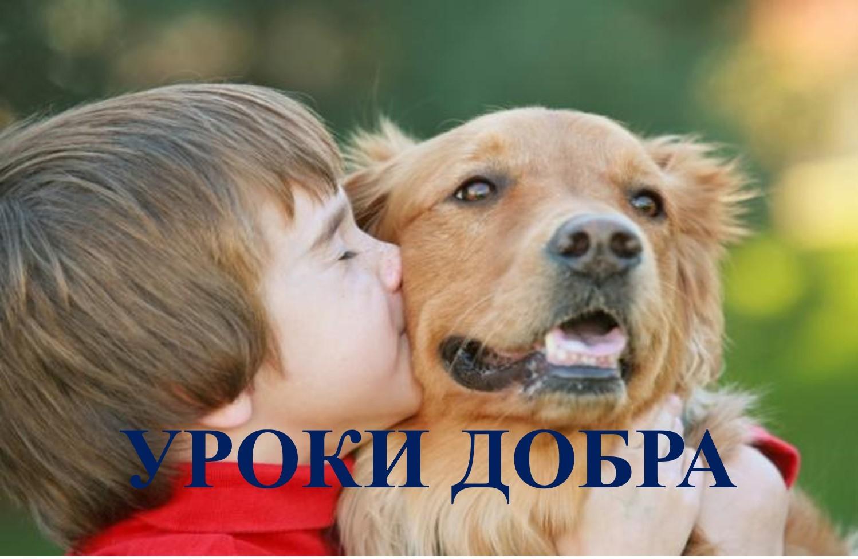 ІІІ Всеукраїнський урок доброти «Гуманне та відповідальне ставлення до тварин»